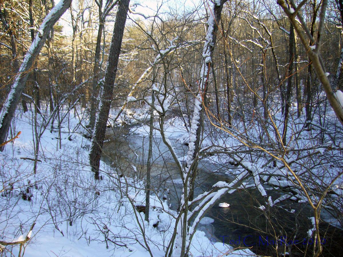 Pickle Creek meanders lazily