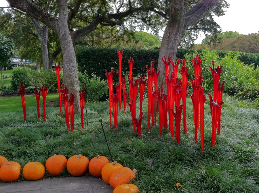 """""""Ruby Fiddleheads"""" by Chihuly"""