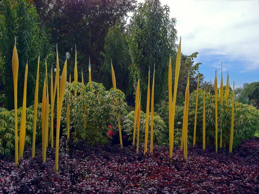 """Yellow Reeds"" by Chihuly"
