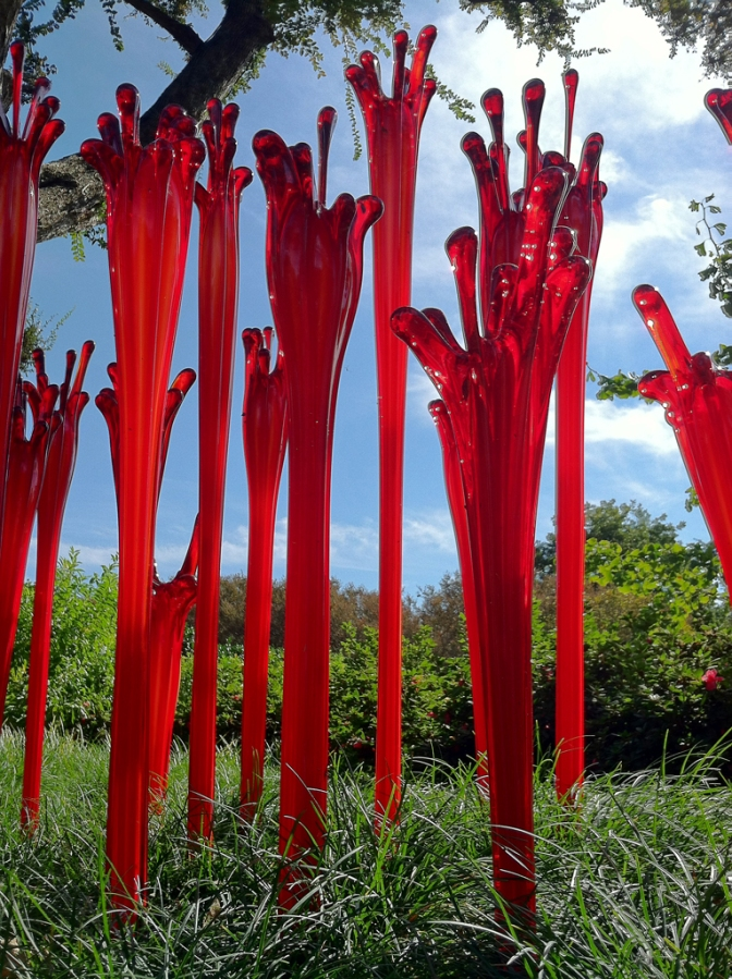 """Ruby Fiddleheads"" by Chihuly"