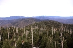 View north from Clingman's Dome Overlook Tower