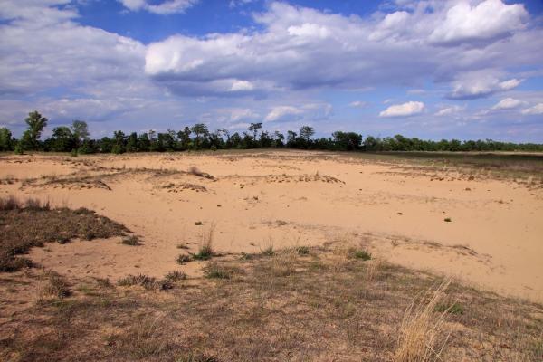 Sand Prairie Conservation Area, Scott Co., Missouri