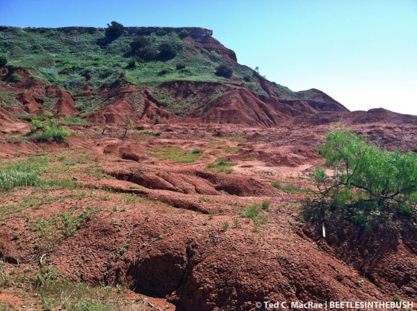 Gloss Mountains State Park, Major Co., Oklahoma