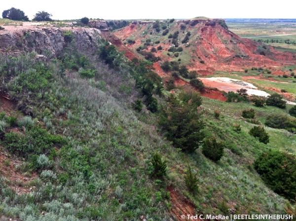 Steep slope below the main mesa | Gloss Mountains State Park, Major Co., Oklahoma