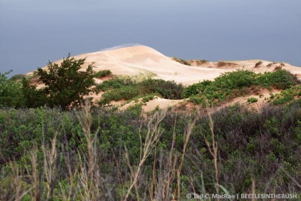 Beaver Dunes, Oklahoma