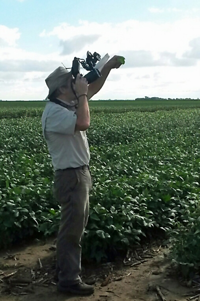 Ted MacRae photographing tortoise beetles.