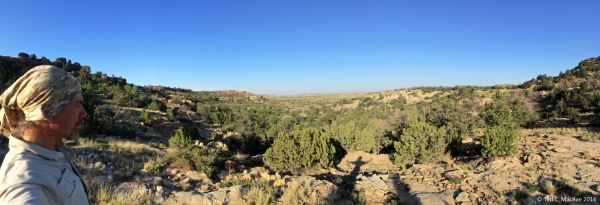 The author looks pensively out over the Black Mesa landscape.