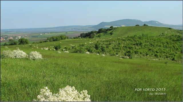 Ilja Trojan, South Moravia, Czech Republic