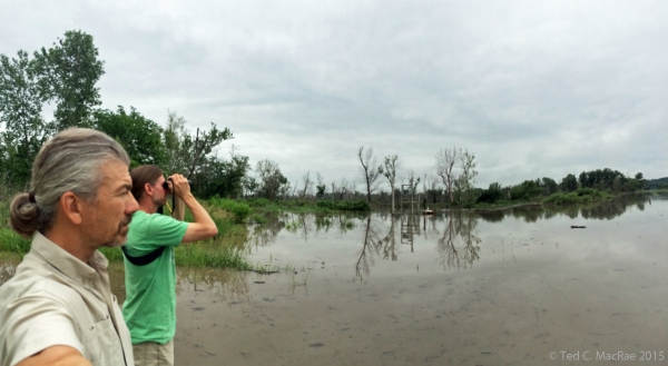Ted MacRae & Chris Brown look out over a flooded wildlife refuge