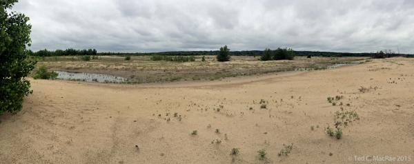Sand plain deposited 2009