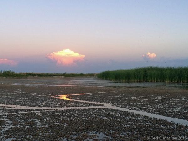 Thundercloud illuminated by setting sun