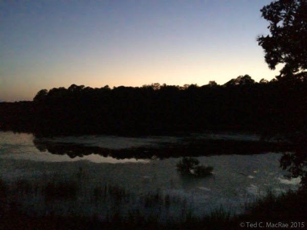 Pinewoods Lake at dusk