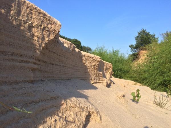 Sand bar along creek