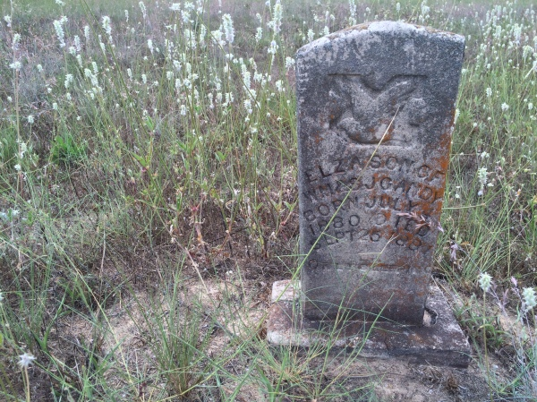 Died 1881 (age 1½ yrs)