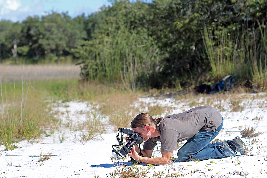 Chris Brown photographing Cicindelidia highlandensis
