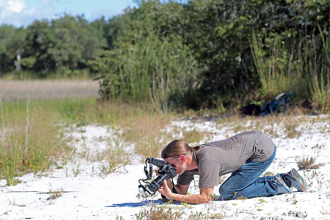 Chris Brown photographing Cicindelidia highlandensis